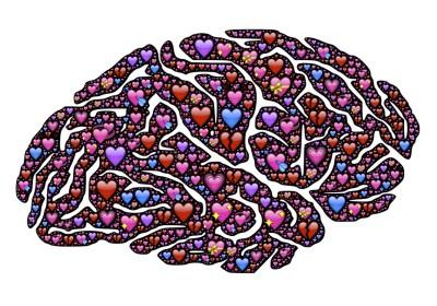 """""""La base de un cerebro sano es la bondad, y se puede entrenar"""""""